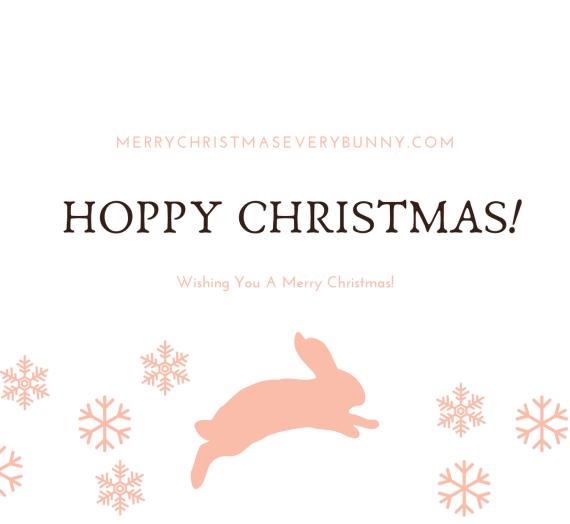 Merry Christmas Everybunny!